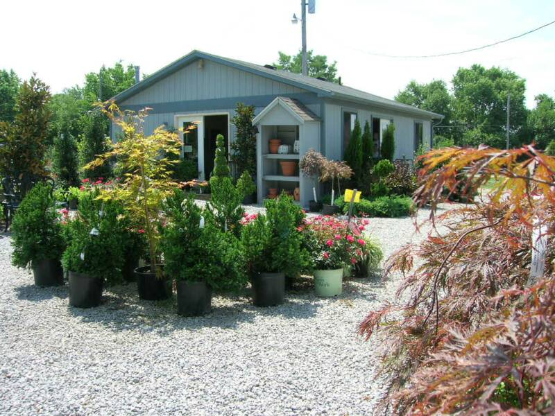 Garden Center Glynn Young S Landscaping Nursery Lexington And Nicholasville Ky