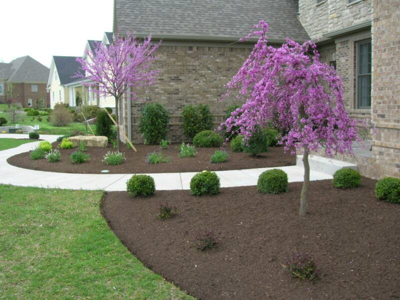 Landscapes Glynn Young S Landscaping Amp Nursery Center